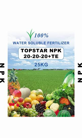 Fertilizer-NPK-20-20-20-TE-